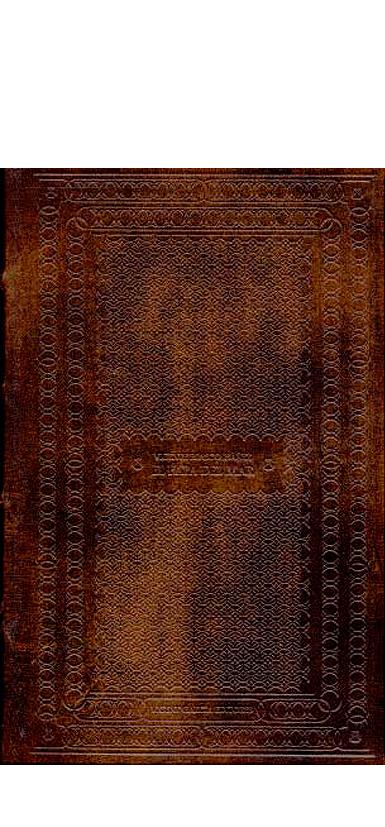 TORR021 - El Papa del Mar